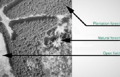 کارشناس تفسیر عکس هوایی