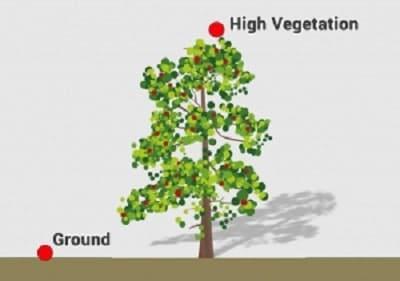 پوشش گیاهی بالا LiDAR در مدل رقومی ارتفاع
